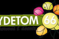 SYDETOM 66